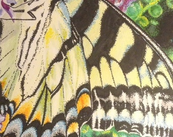 Wings - A Matted Original 16x20 Colored Pencil and Marker Butterfly Drawing
