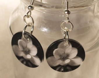 Spring Crocus Flowers Photograph Dangle Earrings in Black and White and Silver