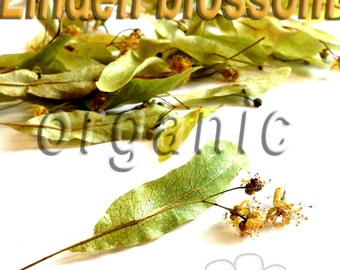 Linden blossom. Dried. Organic herbal tea 20g.