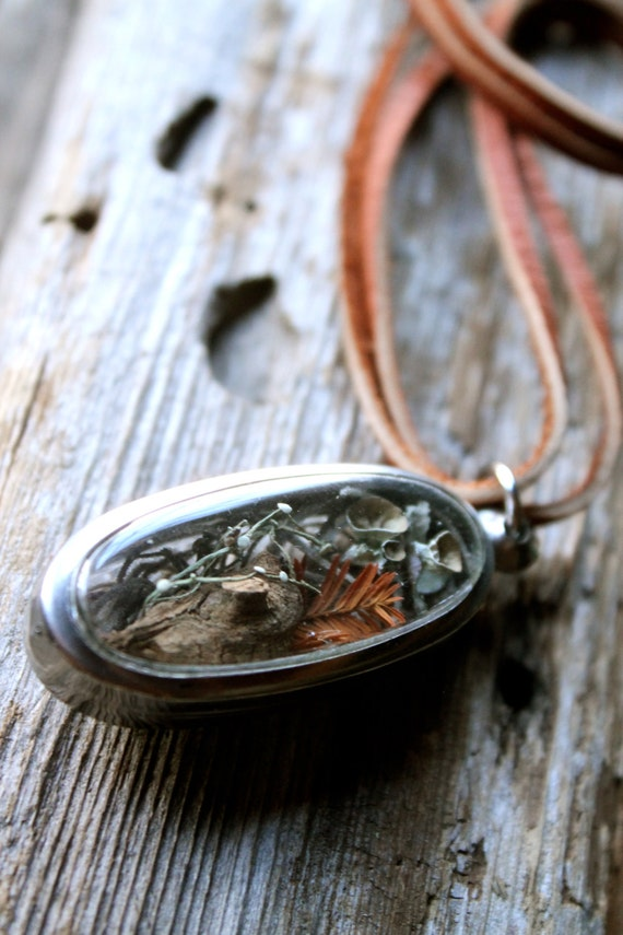 Swamp Terrarium Necklace With Cypress Spanish Moss Pixi Cup