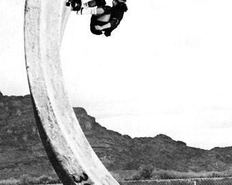 Tony Alva Poster, Legendary Skateboader, Skating Full Pipe, Skatboarding, Z-Boys, Dogtown