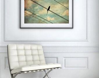 Bird on Wire Photography - Bird Photography - Bird Wall Art - Bird Wall Decor - Nature Wall Art - Nature Wall Decor - Bird Art
