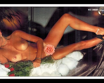 "Mature Playboy January 1978 : Playmate Centerfold Debra Jensen 3 Page Spread Photo Wall Art Decor 11"" x 23"""
