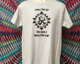 Dark Star Felix Grateful Dead Inspired / Mongo Arts / Womens Bella Junior Fit Shakedown Lot Style T Shirt