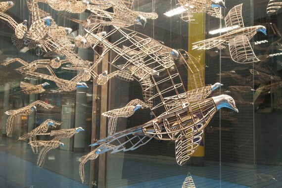 Three Passenger Pigeon Sculptures - a flock of wood and cast aluminum birds