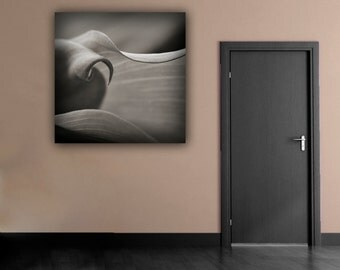 Calla Lily Flower Photograph, Fine Art Floral Photography, Sensual Black & White Botanical Square Wall Art, Romantic Flower Photo Print