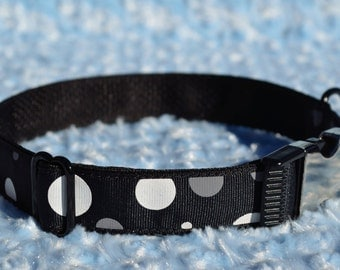 Black with White and Grey Dots on Black Dog Collar