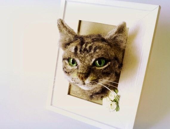 himalayan cat blue eyes