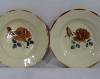 Digoin Sarreguemines, 2 flat bowls, amber rose design, French soup bowls, French vintage ceramic, French dresser plates, mid century,