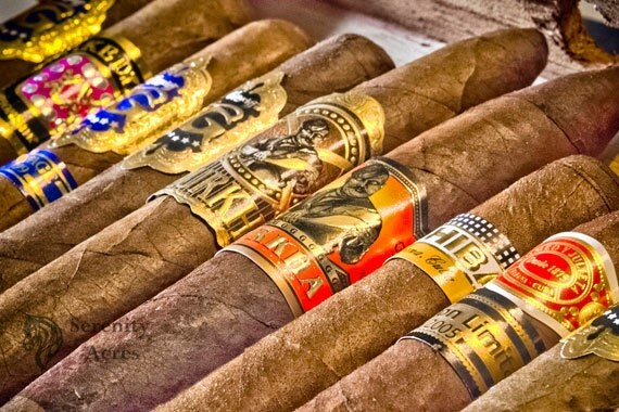Cigars Print Cigar Selection Photograph Cigar Photograph