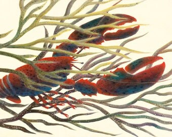 "GICLEE PRINT OF ""Baby Lobster Drifting"""