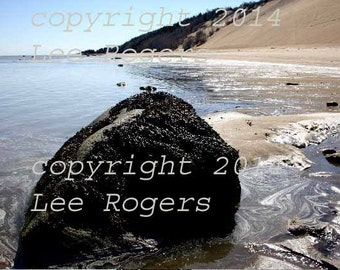 River's Edge-  Color photograph by award winning photographer Lee Rogers