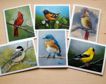 6 pack notecards - bird art - bird stationary - paper goods - thank you notes - bird cards