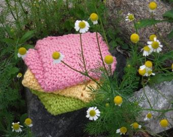 Spring Colors Dishcloth Set