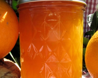 Organic Little Ardyne Orange Ginger Jam