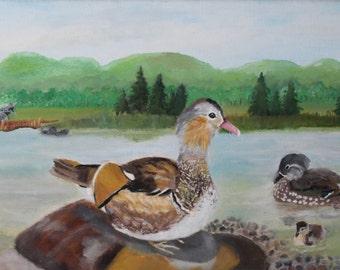 Original oil painting of a Mandarin duck family. Canvas 60x30cm