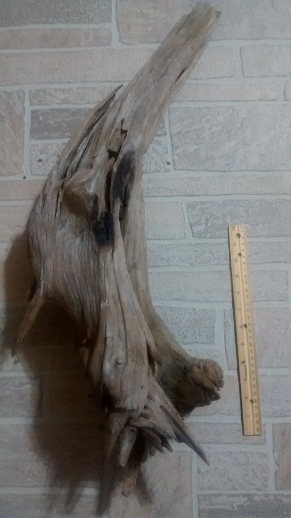 beautiful piece of large driftwood by dreamsofdriftwood