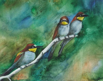 Bee-eaters: Three colorful birds sitting on a branch. Watercollor on Aquarell paper. Original. HandMade