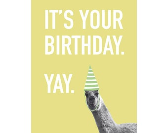 Funny Birthday Card / Llama - Not So Excited