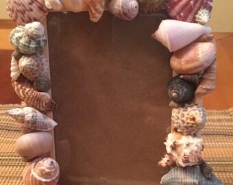 Shell Frame w/ glass 4 x 6