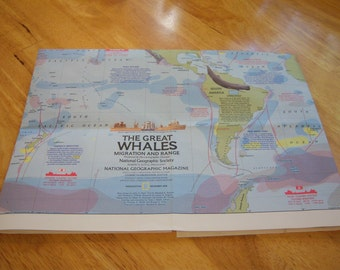 "Vintage National Geographic map ""The Great Whales Migration and Range"" from 1976."