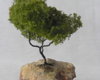 MB2 Miniature tree on rock.
