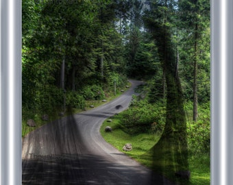 Girl in Forest Visionary Art Print 8 x 10 – Surreal Hidden Face - Surrealism - Nature - Road - Illusion