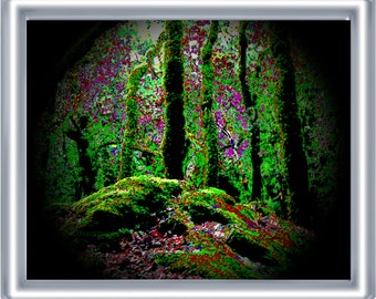 Psychedelic Forest Art Print 8 x 10 – Music Festival Art - A Peek Inside the Forest - Trees - Nature - Visionary