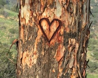 Heart Carving
