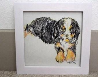 Framed original bernese mountain dog drawing