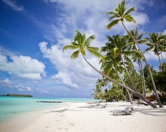 Bora Bora Beaches, French Polynesian Islands, Tropical Paradise, Fine Art Photography, Best Beaches in the World, Not a Care