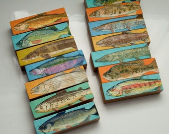 Birthday Gift for Dad Gifts- Freshwater Fish Art Blocks- Whole Mess of Fish Sticks-Set of 14 Fish Prints- Gifts for Fisherman- Coastal Decor