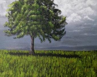 Shadow Old Oak Tree Landscape Large Original Painting by Artist Debra Alouise