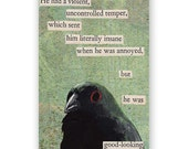 SALE! Good Looking Magnet - Bird - Humor - Handsome - Beautiful - Men - Gift - Stocking Stuffer - Mincing Mockingbird