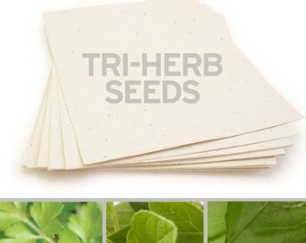 """10 Cream Sheets of Tri-Herb Plantable Seed Paper - 8.5 x 11"""""""