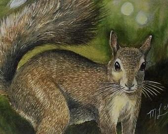 Squirrel Art Melody Lea Lamb ACEO Print Summer Green #381