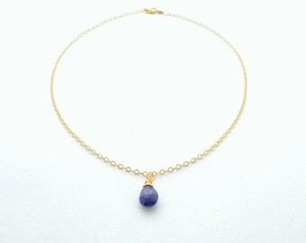 Lapis Lazuli Pendant Drop Necklace