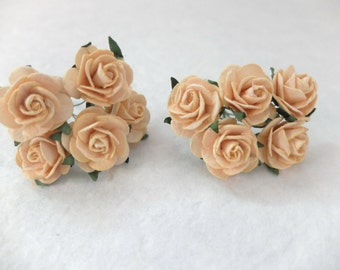 10 25mm light peach mulberry roses - paper flowers