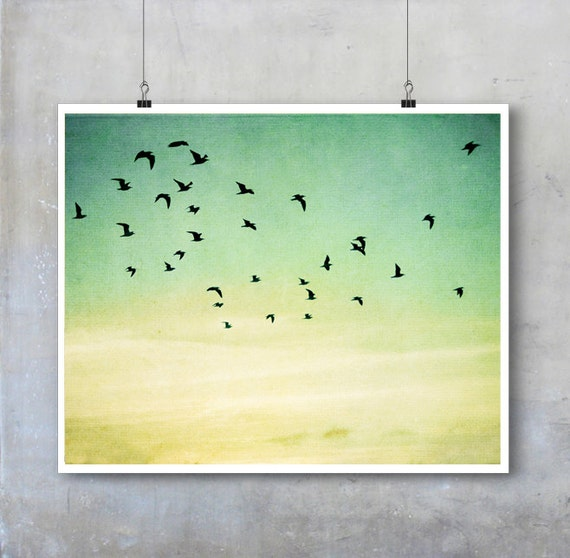 Bird Photography - birds in flight silhouetted evening sky - 11x14 16x20 20x30 photo big print poster wall art home decor nature flock