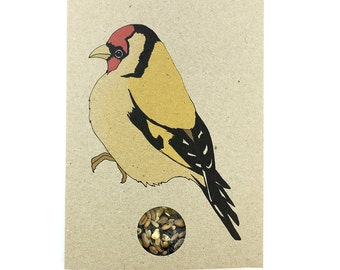 Goldfinch card with bird seed inside! bird print card - recycled eco friendly card - bird seed packet - nature / wildlife gift