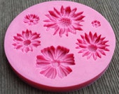 Flowers Applique Silicone Mold