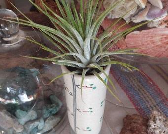 Vintage Japanese Wabi Sabi Style Hanging Flower Vase