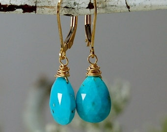 AAA Grade Sleeping Beauty Turquoise Tiffany Blue 14ktGF Earrings