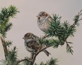 Original Painting - Sparrows
