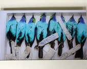Blue Tanager Glass Decoupage Tray