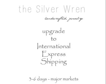 International - Upgraded Shipping -International Express mail- Reserved Listing
