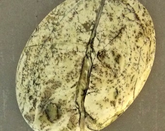 Dendritic Jasper Calibrated Cabochon