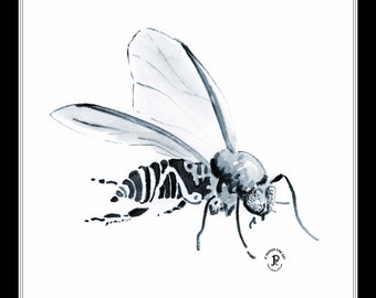 Black Fly - 8x10 Artist Signed Double Matted Decorative Print