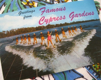 Vintage Florida postcard Cypress Gardens water skiing Esther Williams skiers greetings 1950s