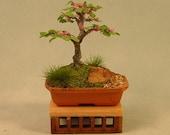 Dollhouse Miniature Bonsai - Informal style, Redbud